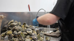 Opening oysters Stock Footage
