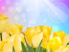 Stock Illustration of Red tulip with bokeh. EPS 10
