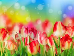 Red tulip with bokeh. EPS 10 - stock illustration