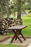 Biomass - stock photo