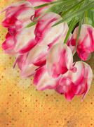 Background with beautiful tulip bouquet. EPS 10 Stock Illustration