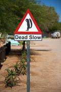 Funny squirrel signboard in Namibia - SOlitaire Stock Photos