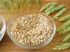 Cereal mixture and grain ears - stock photo