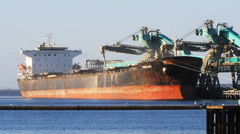 bulk grain carrier - stock footage