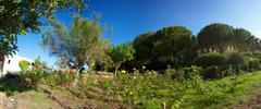 Stock Photo of Mediterranean House in Ibiza