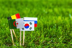 Paper cut of flags on grass for soccer championship 2014 , group h Stock Photos