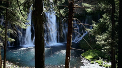Waterfall in Lush Forest Stock Footage