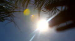 Hand Touches The Sun on sky background and palm branch Stock Footage