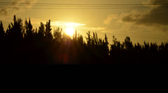 Sunset on the everglades (two different compositions) Stock Footage