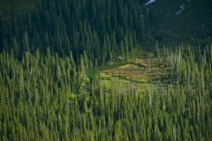 Stock Photo of montana wilderness from bird eye. forest valley and small mountain lake. mont