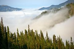 cloudy hills of olympic mountains in washington state, usa. olympic national - stock photo