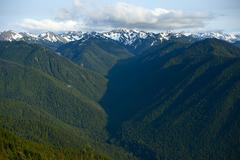 pacific northwest: olympic mountains panorama - the olympic mountains is a mo - stock photo