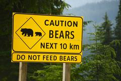 caution bears next 10km - do not feed bears. road side yellow sign in british - stock photo