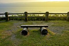 ocean front bench - small wood bench at scenery viewpoint. washington state o - stock photo