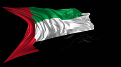 Flag of United Arab Emirates Stock Footage