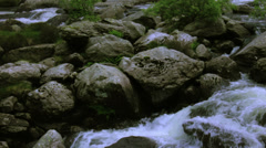 MountainsideWaterSurge-ForestSlopeWide Stock Footage
