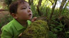 Closeup Of Little Asian Boy Leaning Against A Log And Looking Up At The Trees Stock Footage