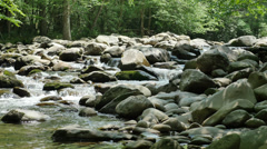 Crisp Clean Fresh Stream Water Mountain Creek Cinematic HD Stock Footage