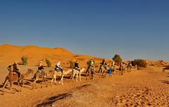 merzouga desert - october 01: tourists in a camel caravan in merzouga desert, - stock photo