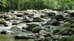 Crisp Clean Fresh Stream Water Mountain Creek Cinematic UHD Stock Footage