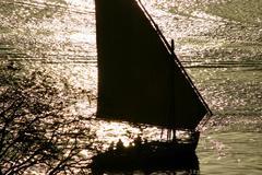 Felucca boat - stock photo