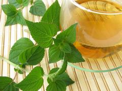 Tea with honey melon sage Stock Photos