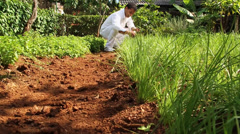 Young man gardening herbs dolly in shot Stock Footage