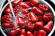 Rose apple in water Stock Photos