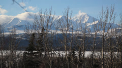 Trees Mountains Snow Alaska - stock footage