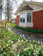 Brick house with tulip flower bed Stock Photos
