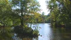 Tranquil Pond Scene - stock footage
