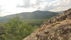 Trails Mountains Rocks Trees Alaska Stock Footage