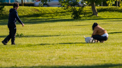 Couple Playing With Two Small Dogs in Park Stock Footage