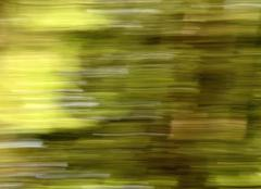 Stock Photo of blurred moving the country