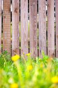 Wooden fence background with  grass border Stock Photos