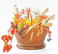 Autumnal basket over white Stock Photos