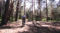 Man cyclist in the wood. shot Footage