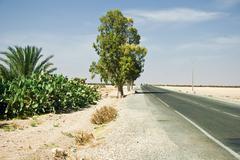 Road to Agadir - Morocco Stock Photos