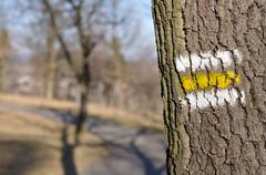 Tourist trail with yellow sign on the tree Stock Photos