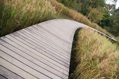 Path in wetland Stock Photos