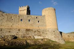 Rocca di Staggia - stock photo