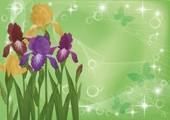 Flowers iris and butterflies silhouettes Stock Illustration