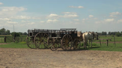 Argentine Pampas wagons Stock Footage