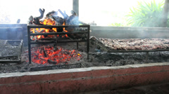 Argentine Pampas fire for grilling meat c1 Stock Footage