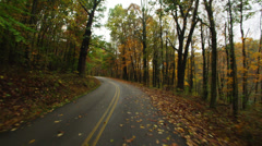 POV Driving tree lined rural road, Fall, West Virginia USA - stock footage