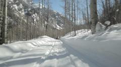Aspen Snow Snowmobilers Stock Footage