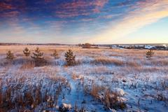 Rural wintry landscape Stock Photos