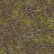 Mossy pavement - stock illustration