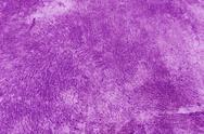 Stock Photo of purple color cement