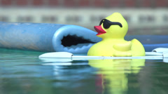 Rubber Ducky in Pool Stock Footage
